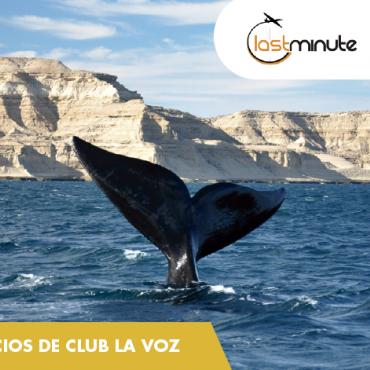 Participá y Ganá un viaje a Puerto Madryn